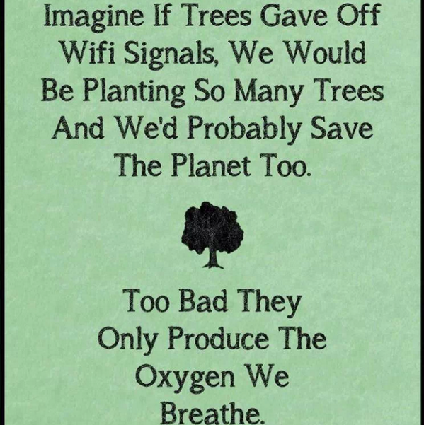 What if Trees gave off WIFI? What would we do? A lovely discussion!   Magical Educator