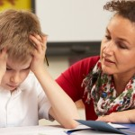 Support Teacher Learning Assistant