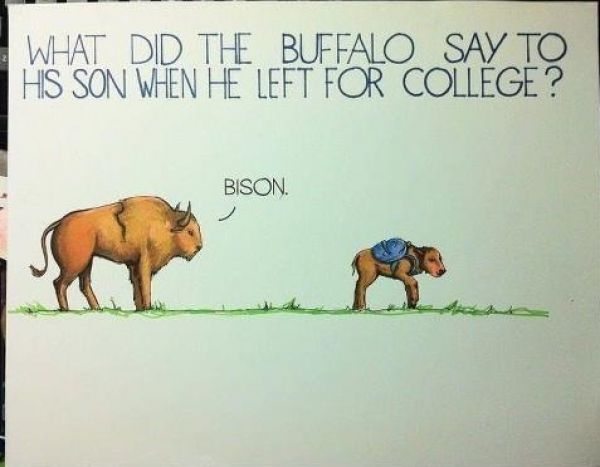 Calling all English teachers! The Top 10 funny puns in the